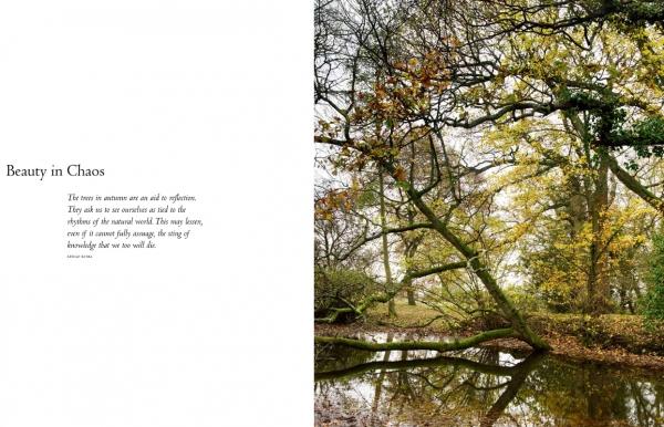 gardenbook058