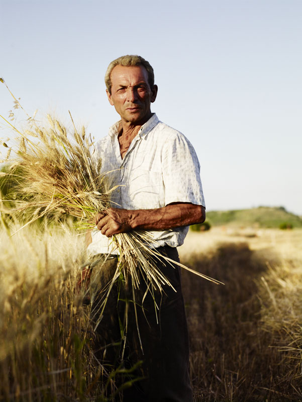Durum Wheat Farmer Altramura Italy Waitrose