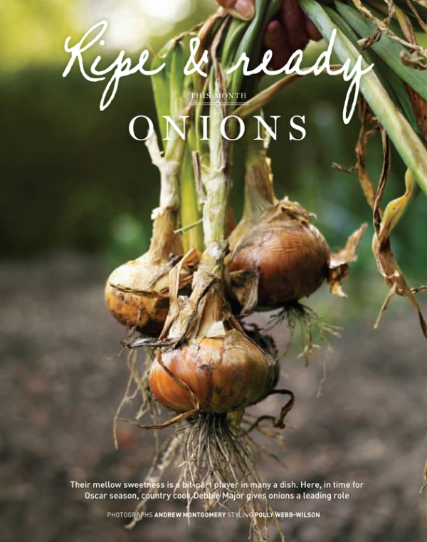 OnionsOne.jpg
