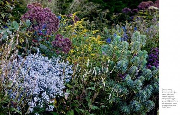 gardenbook061