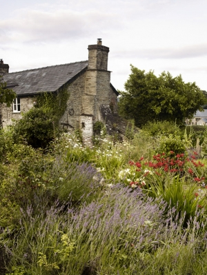 GardenIllCharlieRyrie-064131